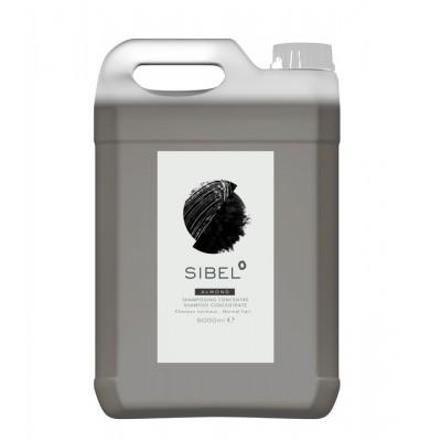 Очищающий салонный концентрированный шампунь с маслом миндаля Sibel Almond Shampoo